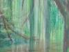 Saule pleureur au pastels secs au Parc Tournay-Solvay